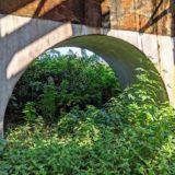 乙川沿いの鉄橋の橋脚