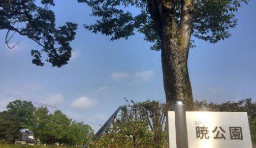 【東海オンエア 聖地】暁公園