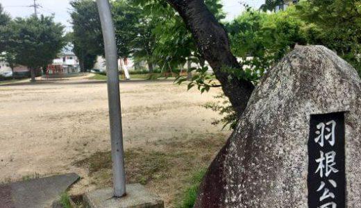 【東海オンエア 聖地】羽根公園