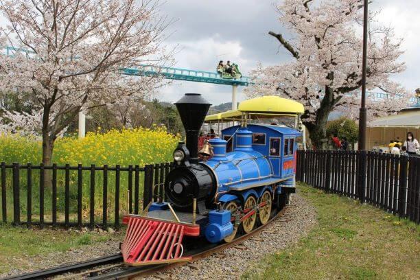南公園の汽車