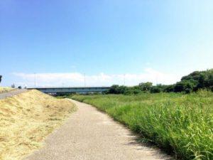渡橋の下に広がる矢作川沿い